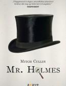 Mr.Holmes (Ag)