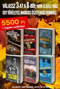őszi teadélután akció könyv ősz tea